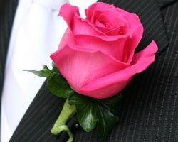 HOT PINK BOUTONNIERE FOR THE HUBBY