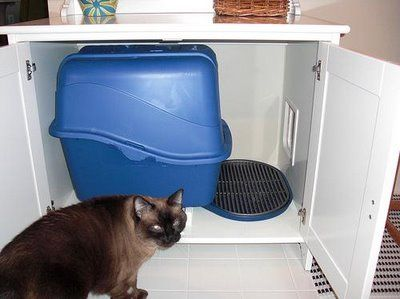 This is a great idea to hide the litter box!