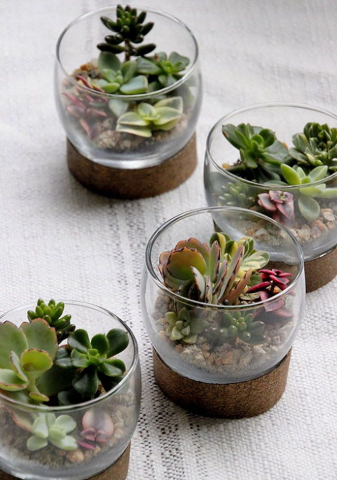 Tiny Succulent Terrariums - Learn how to make these sweet table settings for the holidays. They're the perfect take home gift for your holiday guests. [media_id…