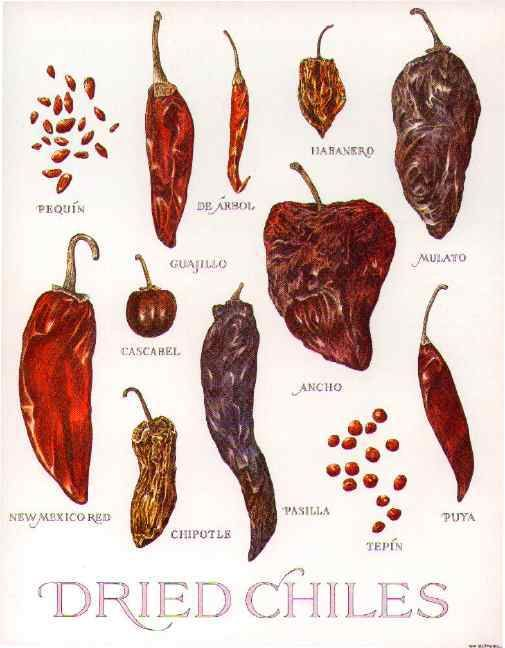 Chiles secos. Tipos de chile - dry chillies types of chillies Mexico