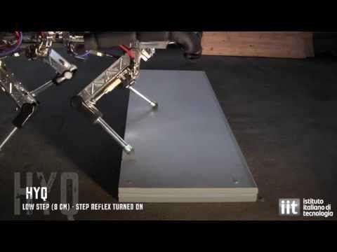 HyQ Robot - new animal-like step reflex