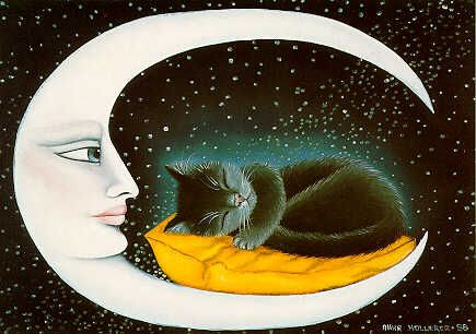 Cat in the Moon by Anna Hollerer