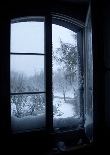 winter window