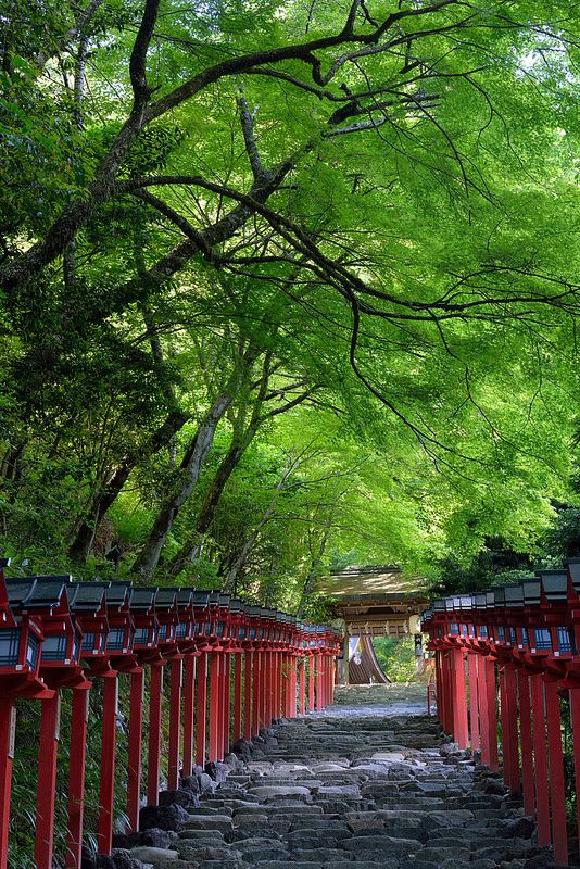 17 Best images about KYOTO on Pinterest  Gardens, Notebook laptop and Photog...