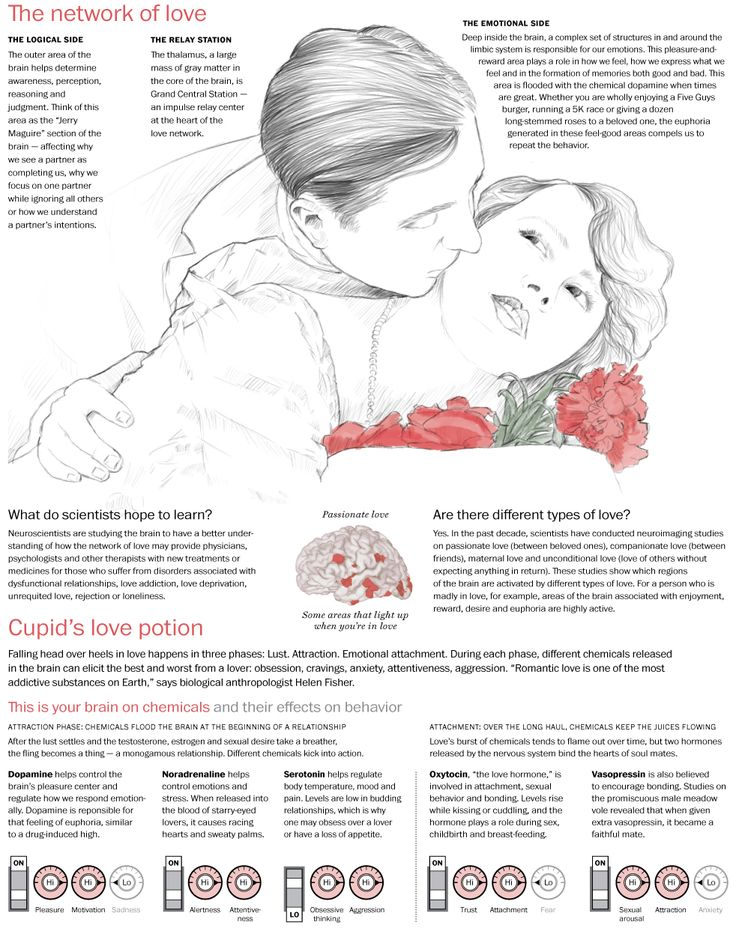 How the mind processes love .. interesting study about  the complex emotion of love (from the brain's perspective:)