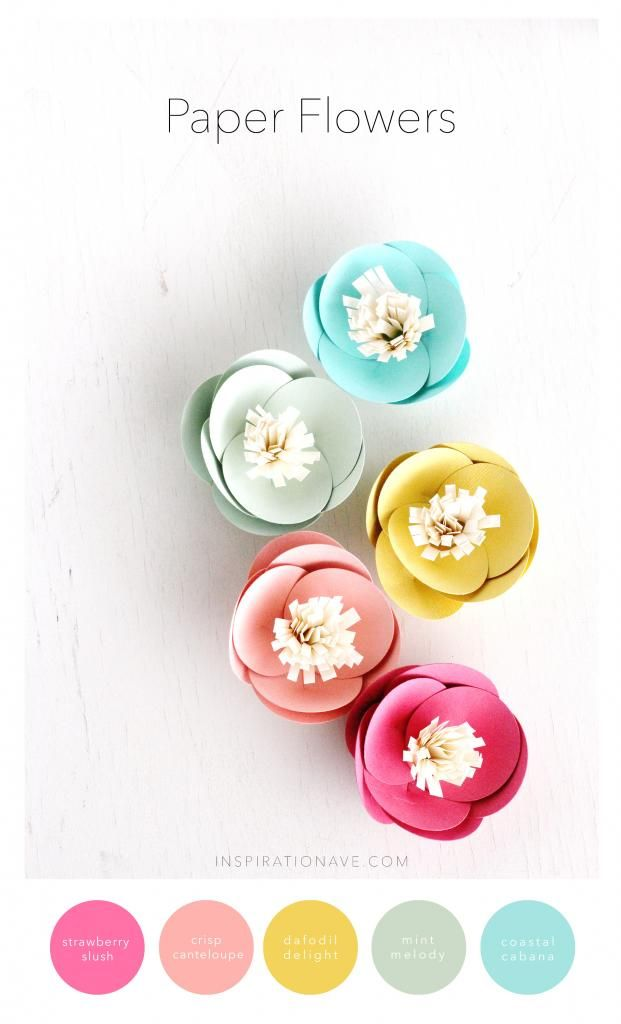 Paper flower How To   Inspiration Ave