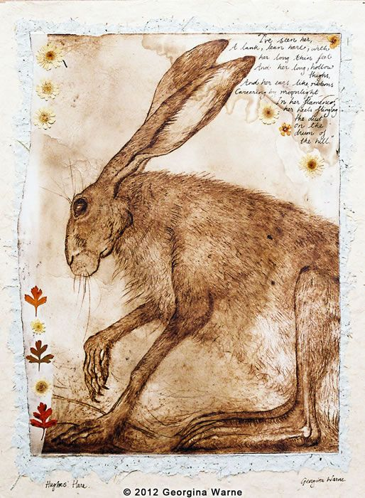 'Hugh's Hare' art by Georgina Warne