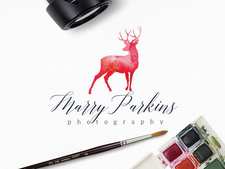 Premade Watercolor Stag Logo Design, Signature Font, Script, Pink, Navy, Photography, Wildlife, Customizable by SmallBottleCreations on Etsy