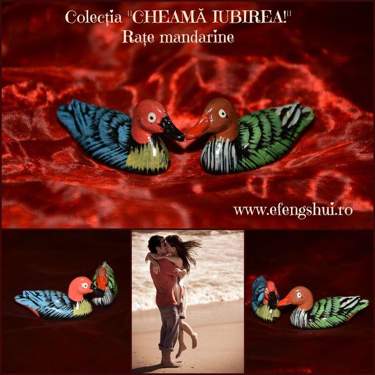 """Colecția """"CHEAMĂ IUBIREA!"""" - Rațele mandarine reprezintă un remediu tradițional chinezesc străvechi pentru găsirea sufletului pereche. Sunt considerate un simbol al dragostei și fidelității deoarece și în viața reală trăiesc în același cuplu pentru totdeauna. Acest model din rășină poate fi comandat aici: http://www.efengshui.ro/produse/rate-mandarine-colorate-1.php"""