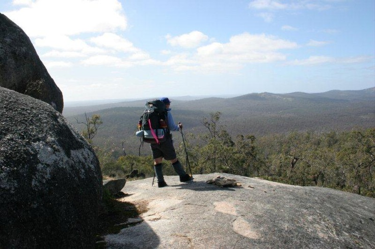 View South from Mt.Cuthbert.  Photo by Pelusey.