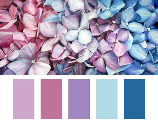 Paleta de cores Lilás Azul