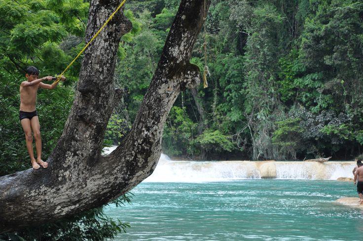Imagina saltar a un agua azul y divertirte como niño. Chiapas te da la oportunidad de hacerlo.  Cascadas de Agua Azul en Chiapas, es para todos aquellos que disfrutamos de la naturaleza, del agua y la libertad. El río Taxha desciende de una manera muy...