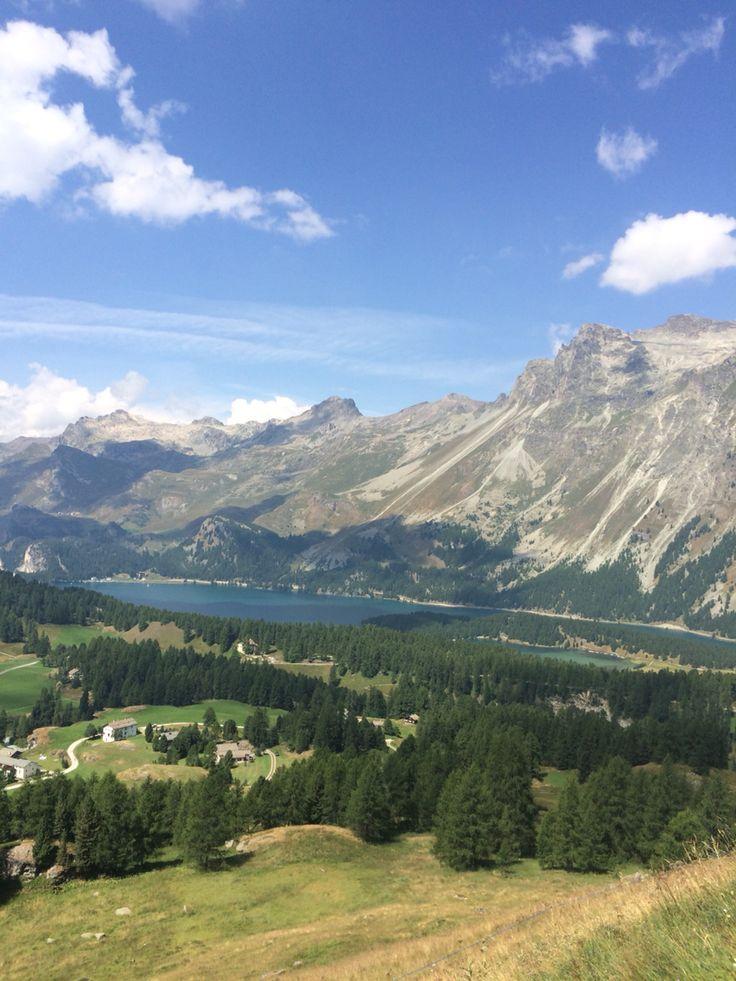 nature// Sils maria // Switzerland
