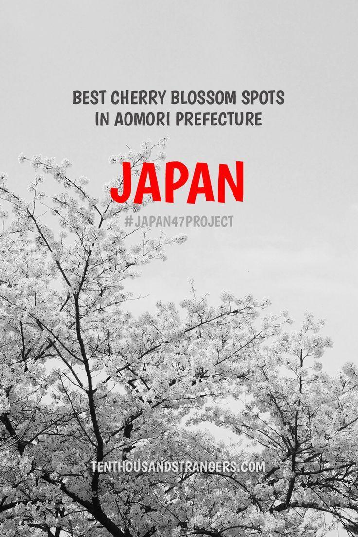 The Best Cherry Blossom Sites In Aomori Prefecture Meandering Wild Aomori Japan Travel Japan
