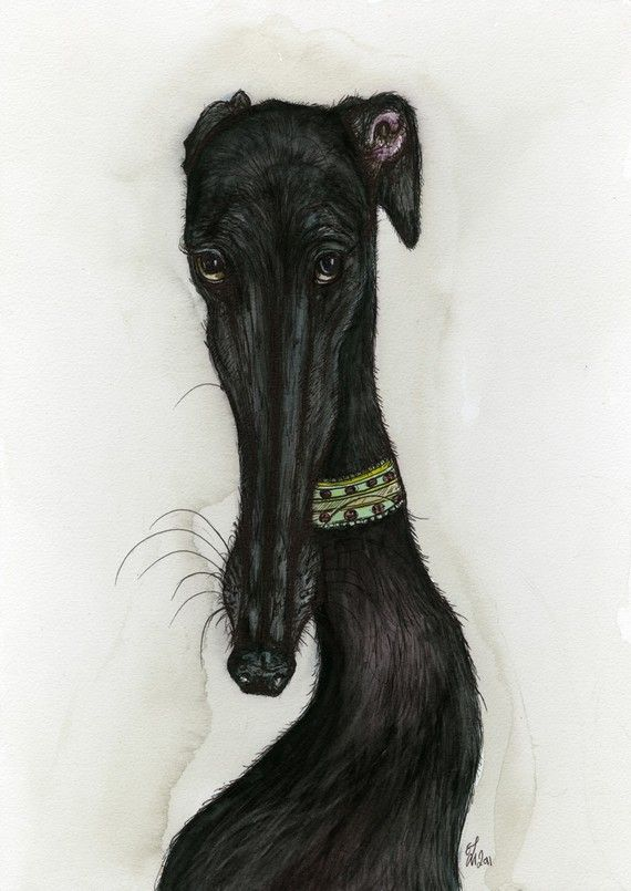 Every cloud has a silver lining - Greyhound Dog Elle Wilson