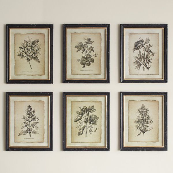 Bring Artful Appeal To Your Entryway Or Master Suite With This Framed Floral Print Showcasing An Ant Framed Floral Prints Floral Wall Art Vintage Floral Print