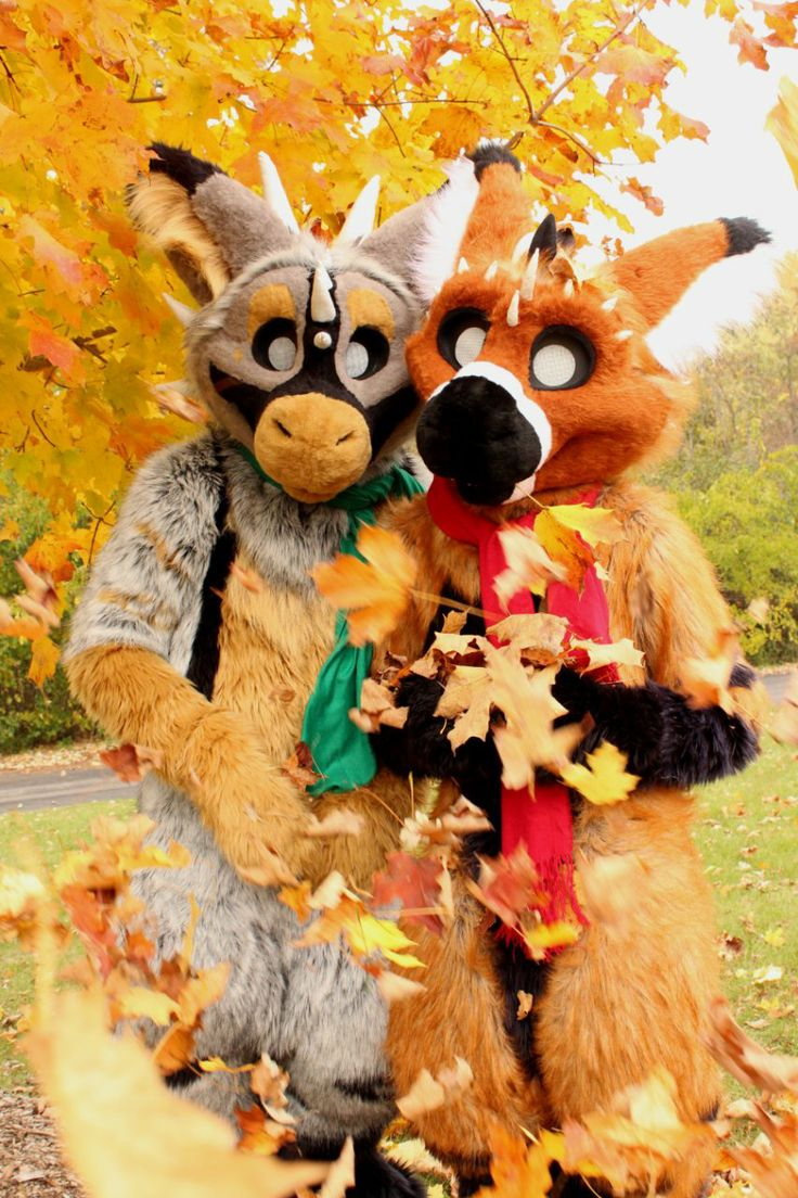 17 Best images about Furries rule!! on Pinterest | Gray ...