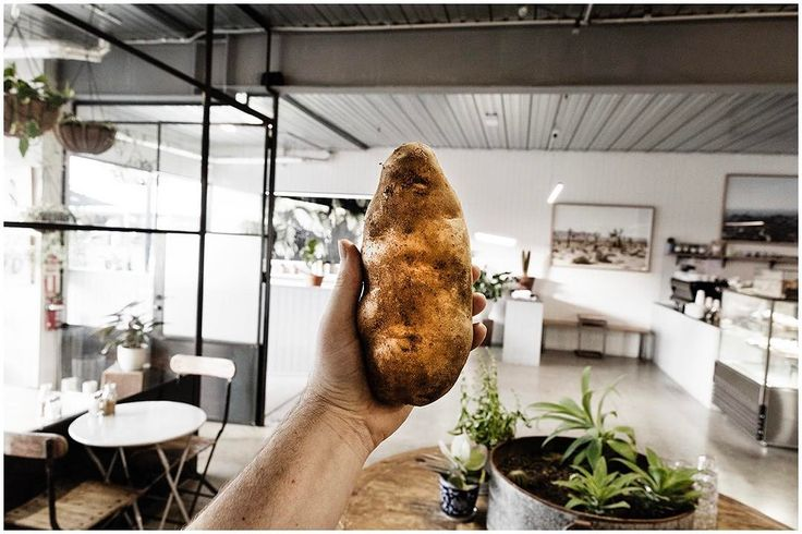 """75 Likes, 3 Comments - southside (@southsidegeelong) on Instagram: """"Potato Fest Thursday's   Come see us turn this spud into Your lunch   Get your baked spud or sweet…"""""""