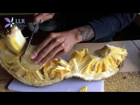 How to cut a jackfruit http://www.liveloveraw.com/benefits-and-how-to-cut-jackfruit/