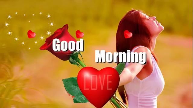 Whatsapp Status Love Quotes For Him Good Morning Love