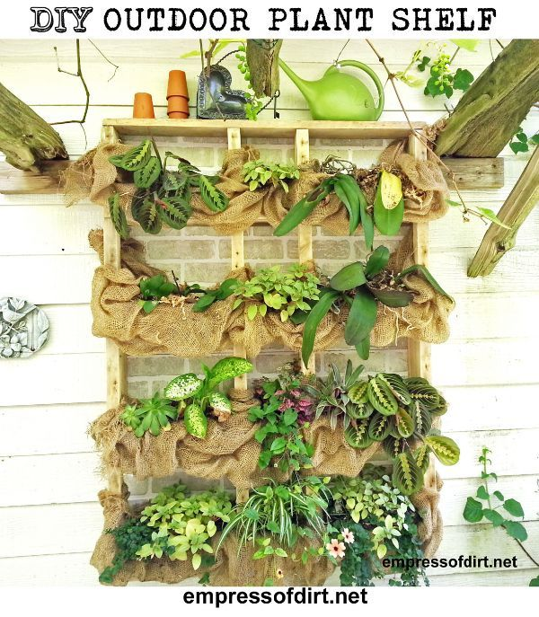 If you can't grow out, grow up! DIY Outdoor wall plant shelf with burlap at http://empressofdirt.net/diyplantshelf/