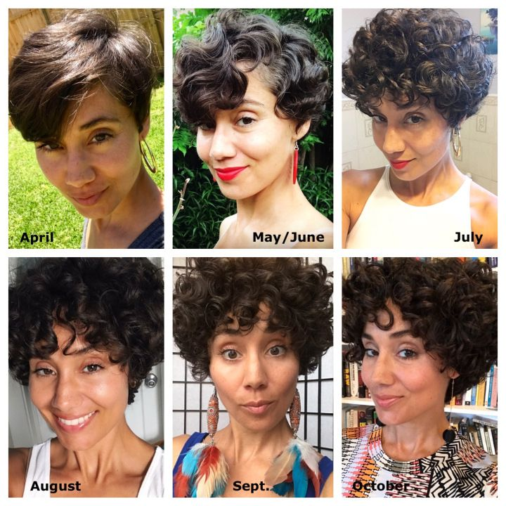 Growing Out A Pixie 6 Month Update Curl On A Mission Curly Hair Styles Curly Hair Growth Curly Hair Styles Naturally
