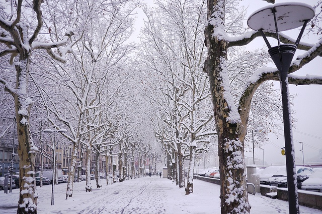 Lyon under the snow. #winter #lyon #france