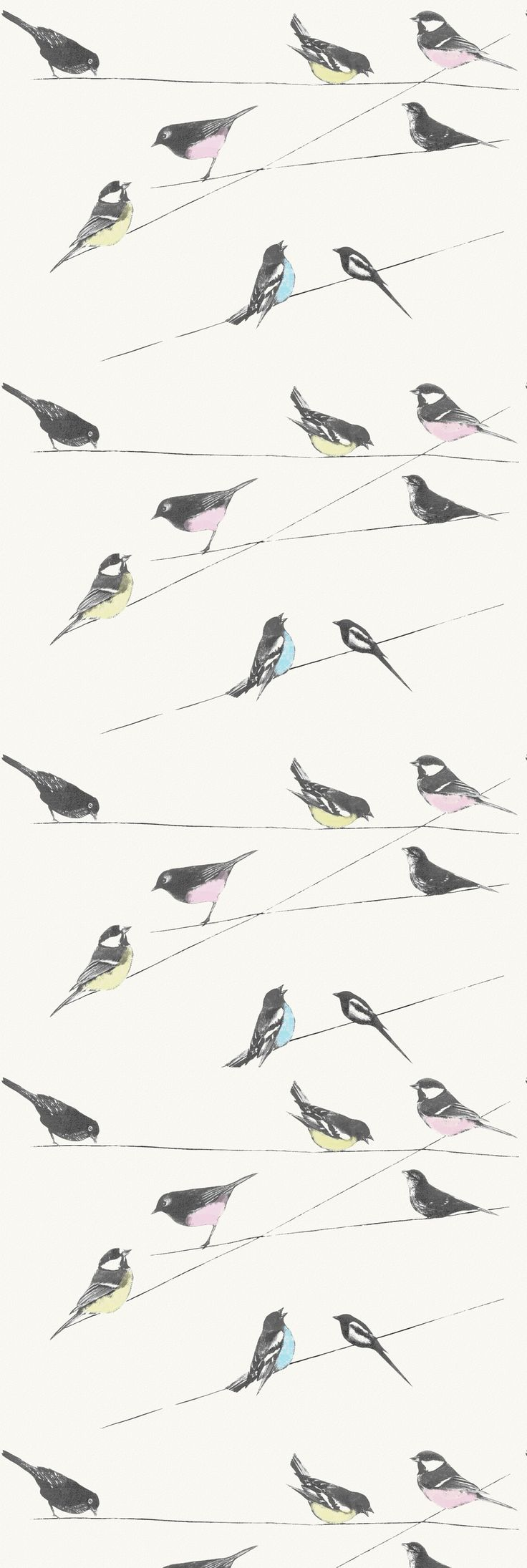 Our classic Garden Birds wallpaper. A Vintage feel wallpaper with little birds perched on wires.