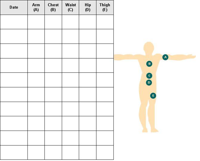 body fat measurements chart socialmediaworksco – Body Fat Percentage Chart Template