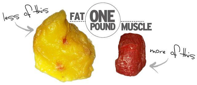 "One Pound Of Muscle Vs. One Pound Of Fat: Clearing Up The Misconceptions. Are you struggling with weight-loss?Read this article to explore the myth, ""muscle weighs more than fat."" Learn why the scale numbers may not be decreasing."