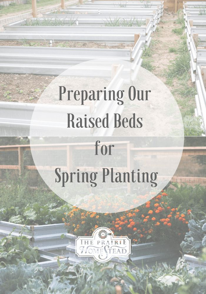 how to prepare raised garden beds for planting