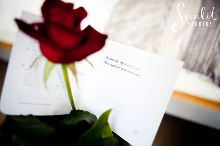 Wedding Gift Idea - A single rose. Photography by Sunlit Studios