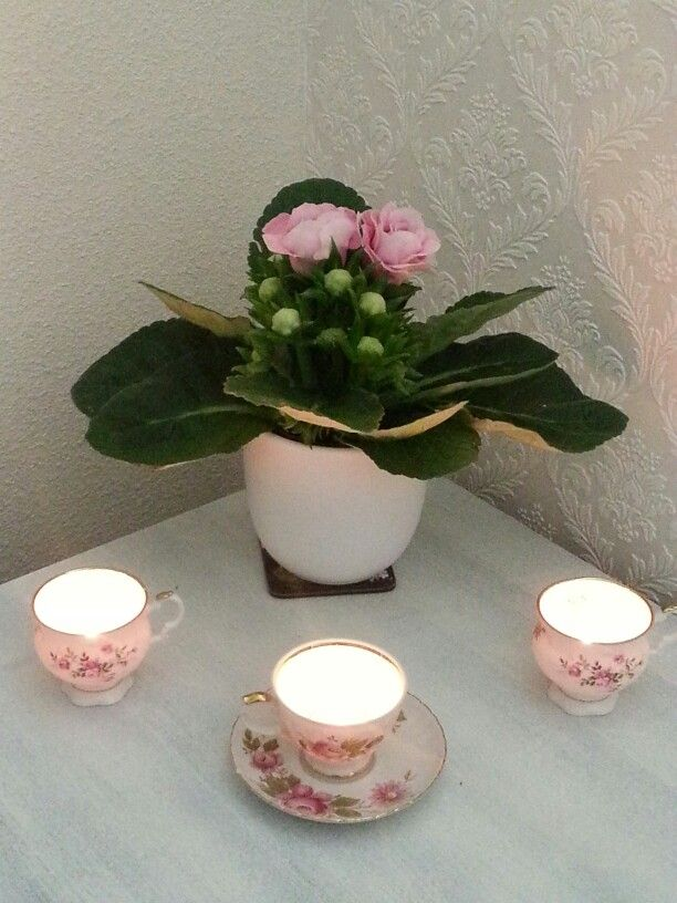 Pink and white floral teacup candles.
