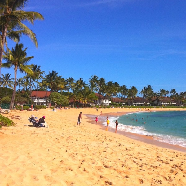 Kauai Beach: Kuai, Poipu Beach. Princeville Vacat.--laurie Patch 808