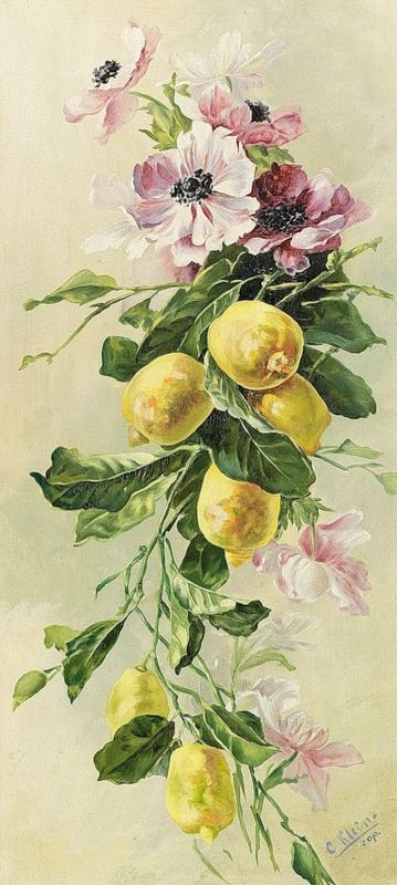 К. Кляйн.  95.   Анемоны и лимоны.