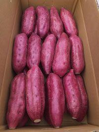 Naruto Kintoki #Sweet #Potatoes, Tokushima, Japan なると金時