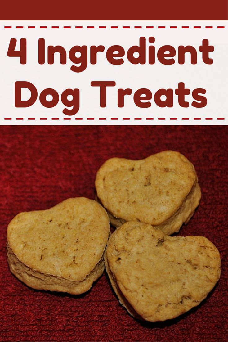 Homemade dog treats/cookies that are sure to please your pup!