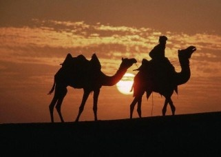 Holiday in Rajasthan Imperial Tour to India-Rajasthan