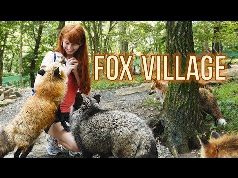 An Adorably Informative Video Tour of the Kitsune Mura Fox Village in the Mountains of Miyagi, Japan