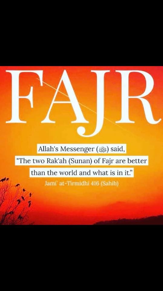 Did you pray Fajr on time?  #Fajr #Prayer #Worship