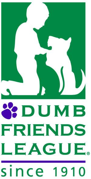 6 organizations that protect animal rights - Dumb Friends League