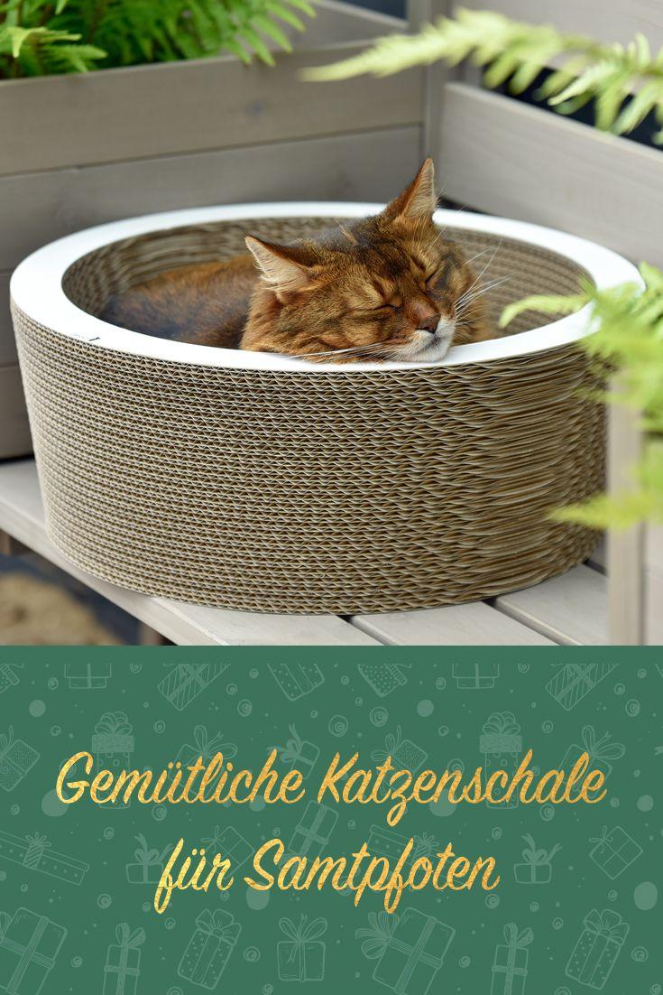 Cat On Kratzbrett Lovale Weiss Gestrichen Kratzbrett