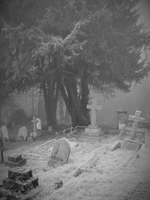 skull-designs: Fog and frost. St Katharines Merstham Surrey.