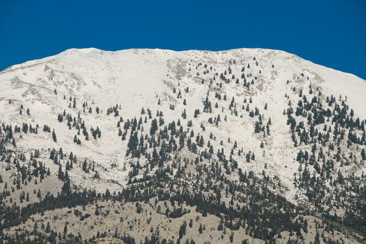 Η οροσειρά της Δίρφυος, στην καρδιά της Εύβοιας! http://diakopes.in.gr/trip-ideas/article/?aid=208767 #travel #greece #evia #winter #snow #mountain