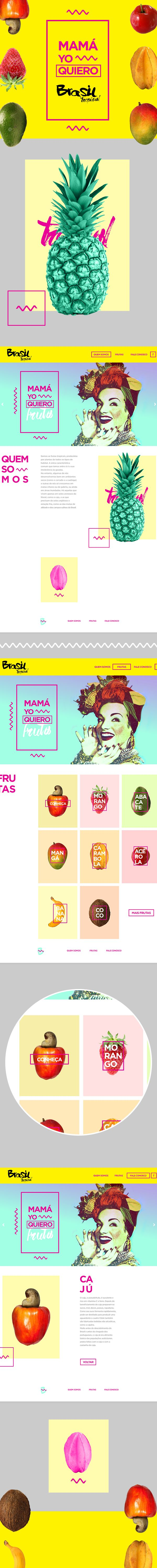 Brasil Tropical by Marco Leal, via Behance. Summer palette.