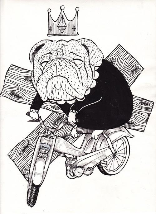 Riding dog