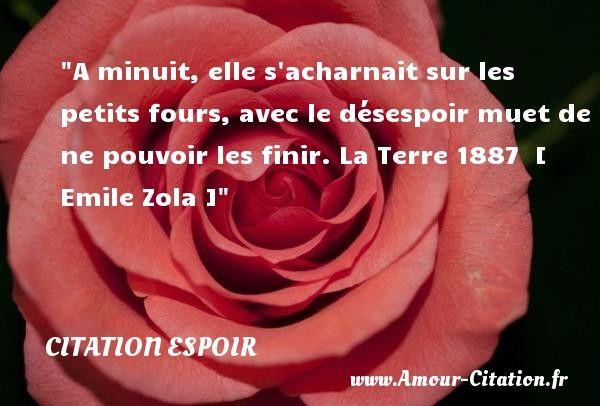 Emile Zola Un Mariage D'amour