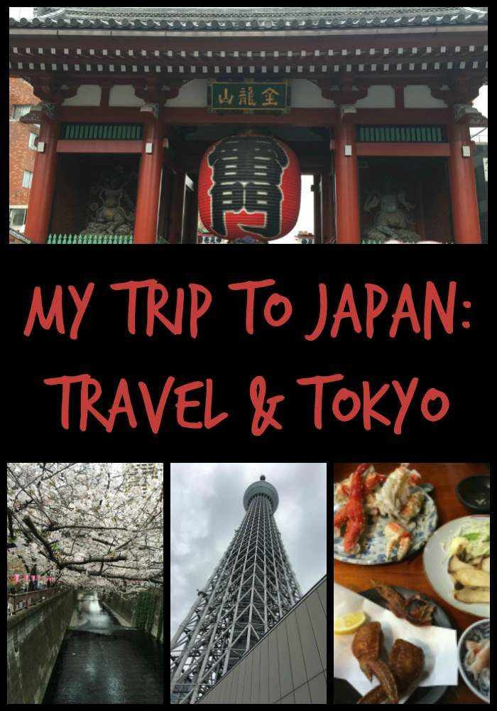 my trip to japan I have actually chosen to major in japanese language at my university and i will  be returning to japan next year for a study abroad session this trip with travel.