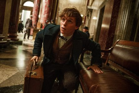 Fantastic Beasts Sequel Reveals Plot Details, Cast As Filming Starts   Deadline