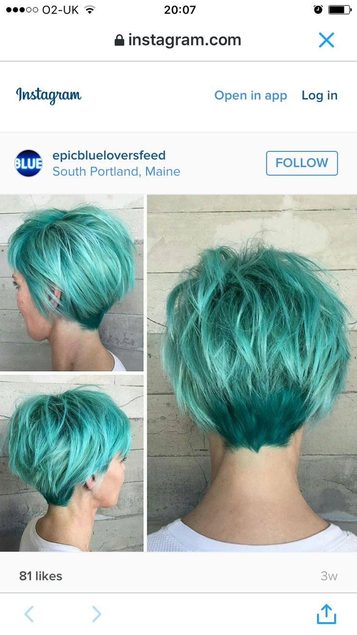 Back of a pixie as it grows out. Pretty green but its not for me. 😊